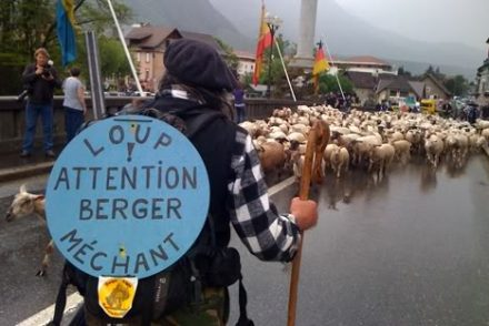 berger-anti-loup