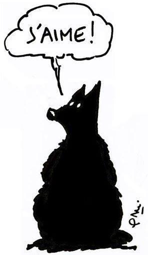 ce-que-dit-loup