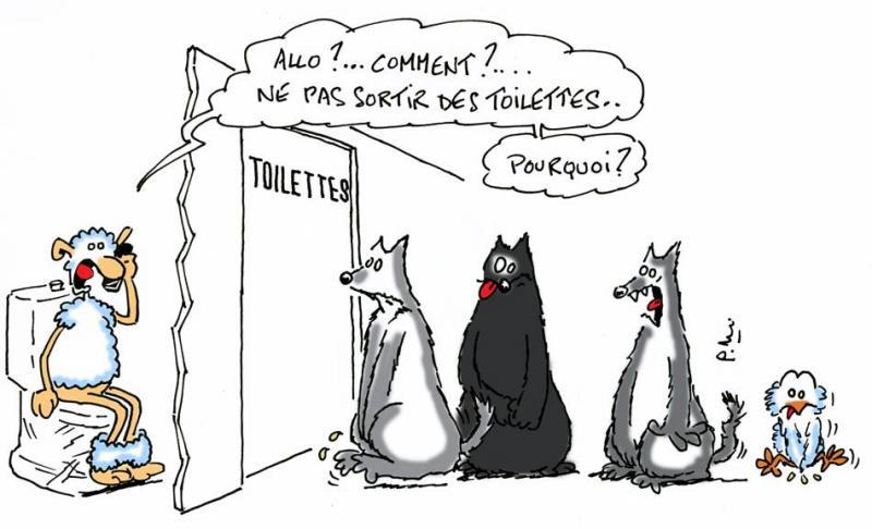 Humour lupin 5 site officiel association le klan du loup - Image mouton humoristique ...