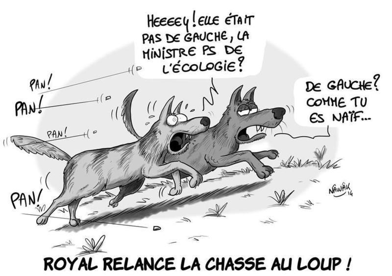 segolene-royal-jusque-lie-loup