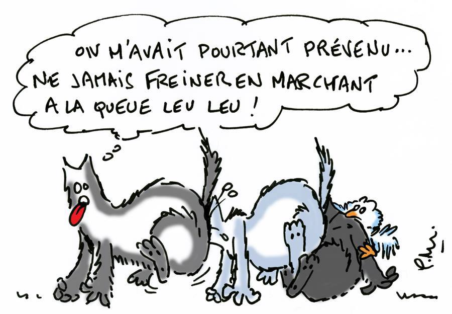 humour-lupin-22