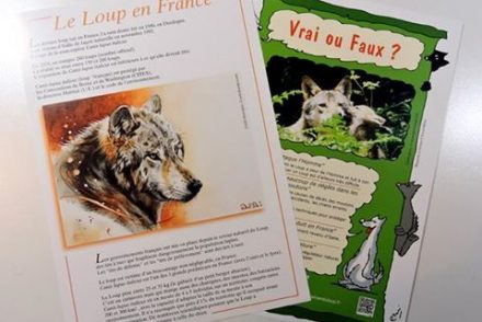 plaquettes-infos-loup