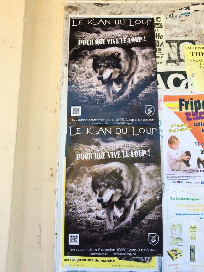 klan-loup-affichage-10-16