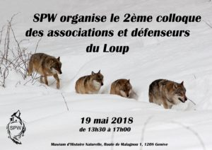 loups-loup-suisse