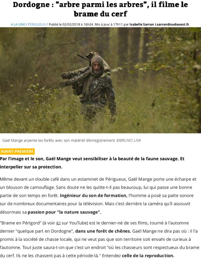 gael-mange-cerf-pirate