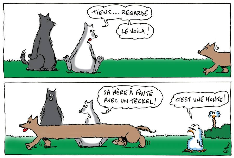 humour-loup-teckel