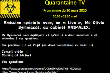quarantaine-tv-programme-3