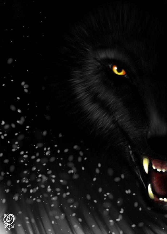 Wolf-Obsydienn-Graphics