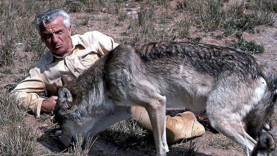 gerard-menatory-loups-gevaudan