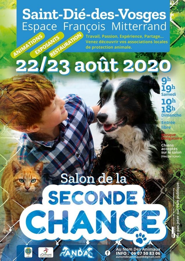 klan-loup-salon-seconde-chance